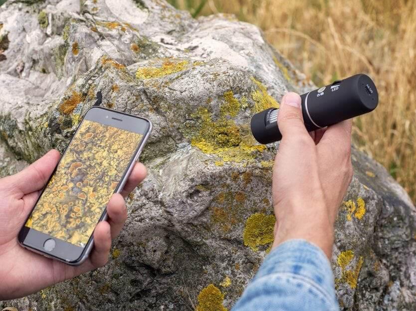 mikroskop sten med lav